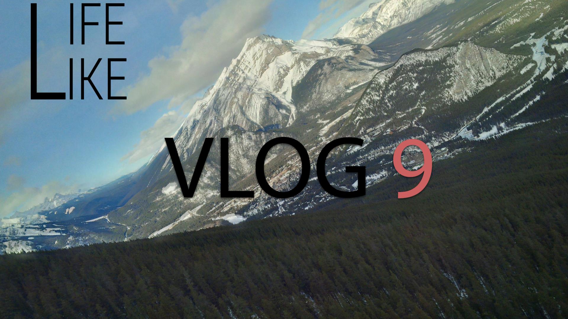 VLOG 9